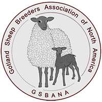 Gotland Sheep breeders Association of North America